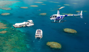 All Cairns Tours Scenic Reef flights