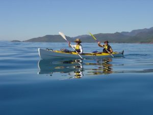 see-kayaking-cairns-tours