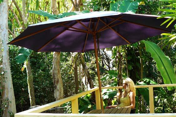 room_rainforest_apartment_563x376