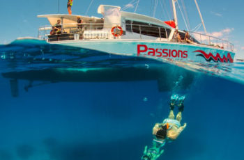 Great-barrier-reef-tour-cairns-passions-of-paradise-reef-tour
