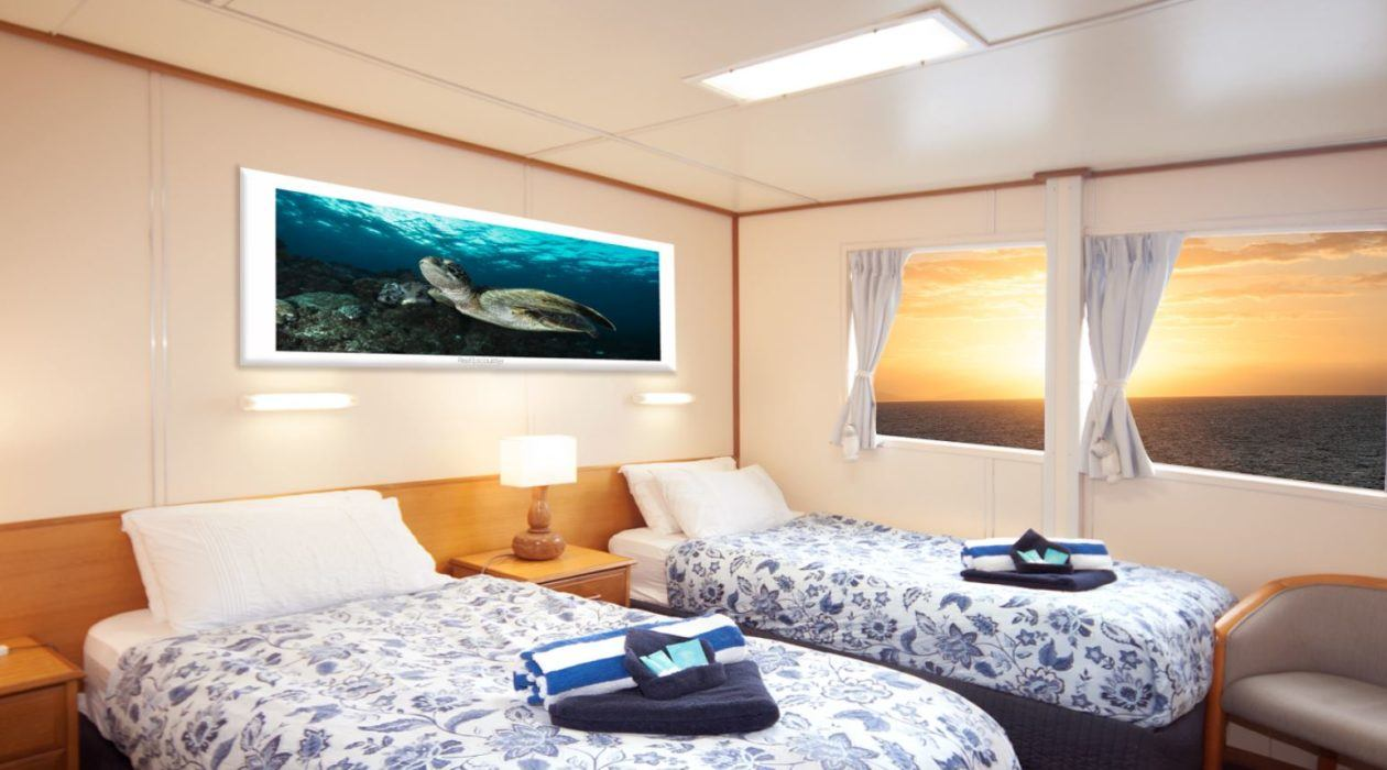 reef-encounter-stateroom-1260x700