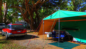 family friendly palm cove dt